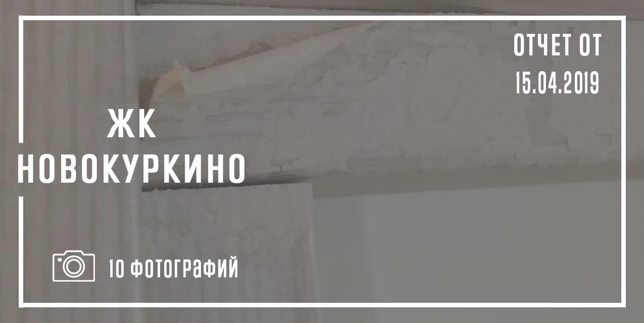 Новокуркино